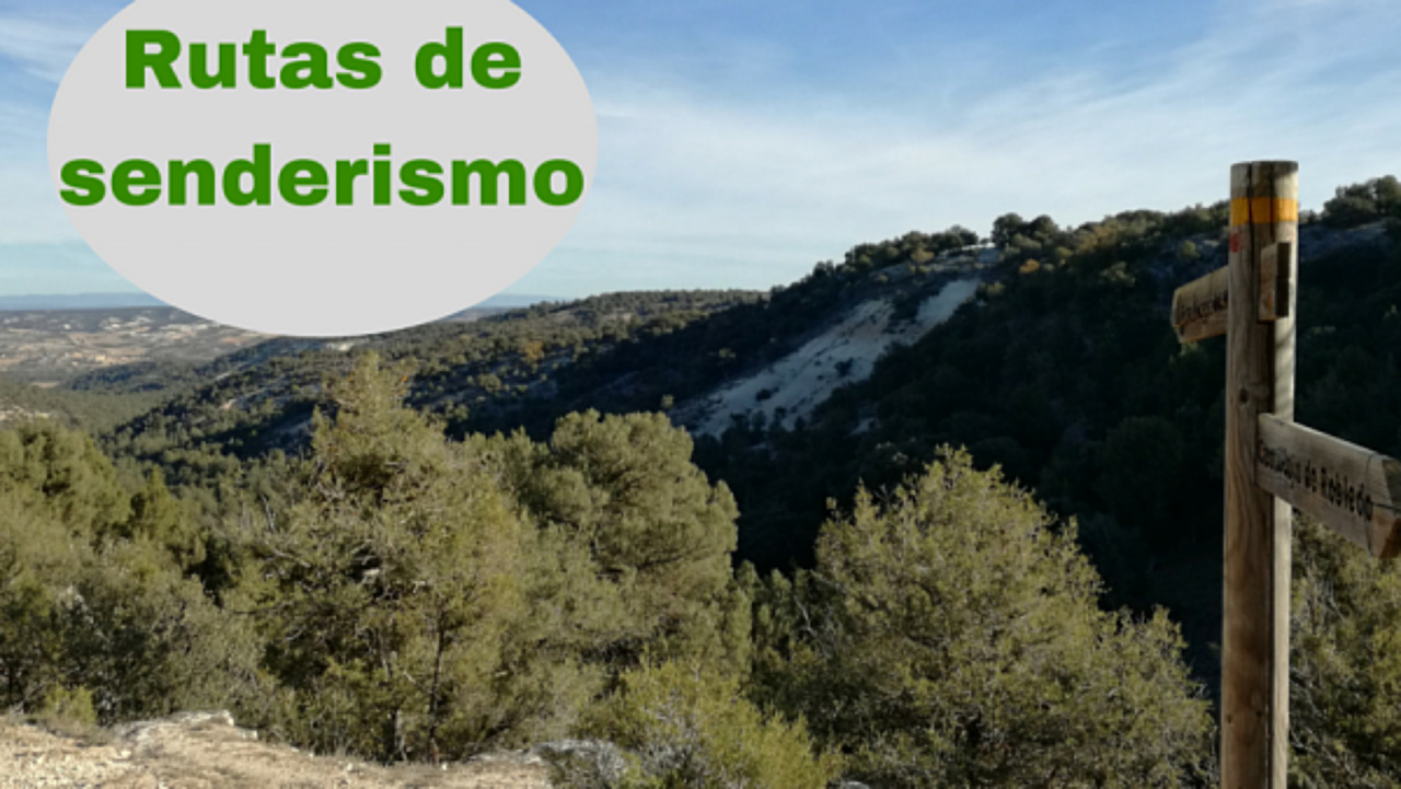 routes , walking, hiking , nature , Ribera del Duero , Burgos, small route , PR